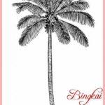 Sketsa Gambar Pohon Kelapa Kartun