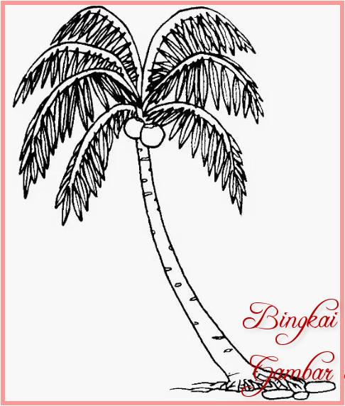 Sketsa Gambar Pohon Kelapa Melengkung