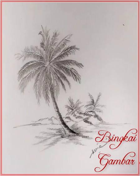Sketsa Gambar Pohon Kelapa Miring