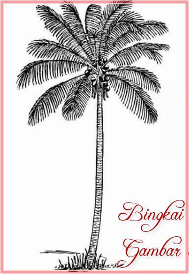 Sketsa Gambar Pohon Kelapa Yang Indah