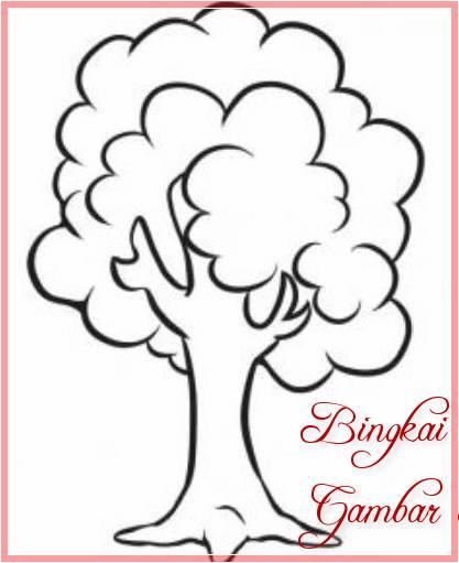 Sketsa Gambar Pohon Pinus Kartun