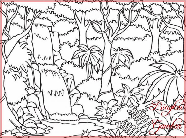 Sketsa Gambar Pohon Pinus Lembang