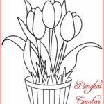 Sketsa Lukisan Bunga Tulip Sederhana