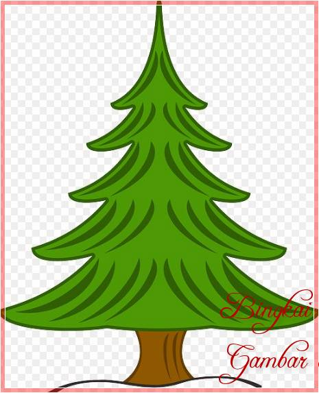 Sketsa Warna Gambar Pohon Cemara