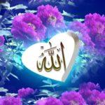 Kaligrafi Allah Paling Bagus Simple