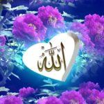 Contoh Gambar Kaligrafi Bunga Mawar