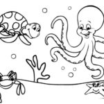 Contoh Gambar Sketsa Bawah Laut