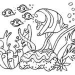 Gambar Sketsa Alam Bawah Laut