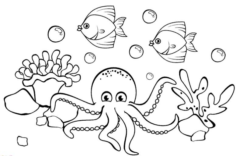 Gambar Sketsa Bawah Laut Yang Mudah Digambar