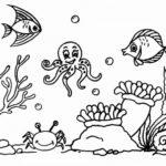Gambar Sketsa Dasar Laut