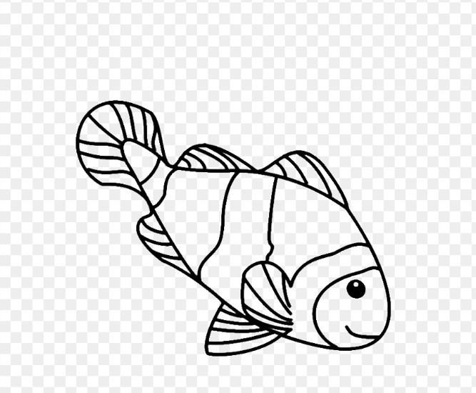 Gambar Sketsa Ikan Badut