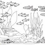 Gambar Sketsa Kehidupan Bawah Laut